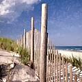 Jersey Shore  by Allen Beatty