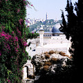 Jerusalem Beautiful by Constance Woods
