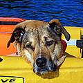 Jessie Kayaking by Susan Jensen