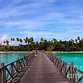 Jetty On Tropical Island by Fototrav Print