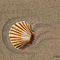 Jewel On The Beach II by Mike Robles