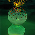Jeweled Astrophytum  by Ann Stretton