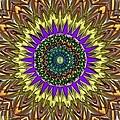 Jeweled Kaleidoscope Bloom by Alec Drake