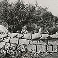 Jews Guard Their Settlement by Everett
