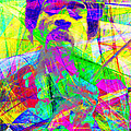 Jimi Hendrix 20130613 by Wingsdomain Art and Photography