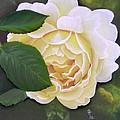 Joanne by Rosemarie Temple-Smith