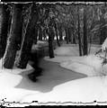 Job's Winter Stream by Eric Benjamin
