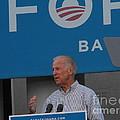 Joe Biden by Lisa Gifford