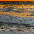 Joe's Cape Cod by William Tremble