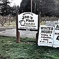 Joe's Place Farms by Melissa Coffield