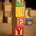 Joey - Alphabet Blocks by Edward Fielding