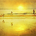 Jogging On Beach With Gulls by Theresa Tahara