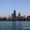 John Hancock Building And Chicago Il Skyline by Thomas Woolworth