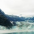 John Hopkins Glacier by D Hackett