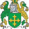 Jones Coat Of Arms Kildare Ireland  by Heraldry