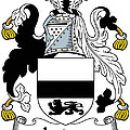 Jordan Coat Of Arms Irish by Heraldry