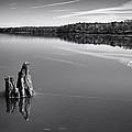Jordan Lake Reflections II by Ben Shields