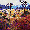 Joshua Tree Light by Erin Hanson