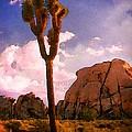Joshua Trees 2 by Timothy Bulone