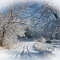 Journey Into Winter by Teresa Schomig