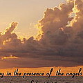 Joy Of The Angels by Sheri McLeroy