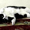 Joyful Kitty by Jeanne A Martin