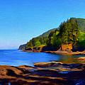 Juan De Fuca Shoreline by Paddrick Mackin