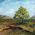 Jubilant Fields by Meaghan Troup