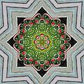 Jubilant Mandevilla Kaleidoscope Pattern by Kathy Clark