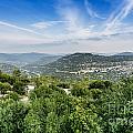 Judean Foothills Landscape by Sv