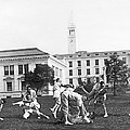 Judo At Uc Berkeley by Underwood Archives