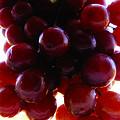 Juicy Grapes by Joseph Hedaya