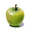 Juicy Green Apple by Irina Sztukowski