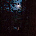 July Moon by Mother Turtle Photography Images by Marsia Shuron