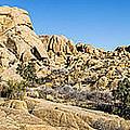 Jumbo Rocks by Kelley King