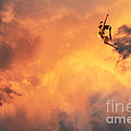'jump Into The Fire' by Suzette Kallen