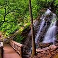 Juney Whank Falls by Carol Montoya
