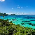 Jungle And Turquoise Water by Jess Kraft