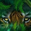 Jungle Eyes - Tiger by Carol Cavalaris