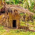 Jungle Hut In A Tropical Rainforest by Colin Utz