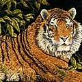 Jungle Monarch by Rick Bainbridge