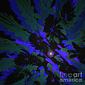 Jungle Night Sky By Jammer by First Star Art