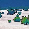 Juniper Field by Tim Richards