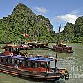 Junk Boats In Halong Bay by Sami Sarkis