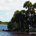 Jupiter Florida Shores by Susanne Van Hulst