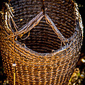 Just A Basket by Tony Noto