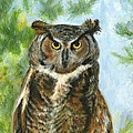 Just A Hoot by Deborah Butts