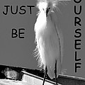 Just Be Yourself by David Lee Thompson