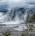 Just Before The Storm - Mammoth Hot Springs by Sandra Bronstein