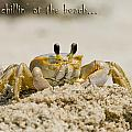 Just Chillin On The Beach by Jeff Abrahamson